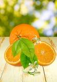 Pomarańcze na stole na zielonym tle obraz stock