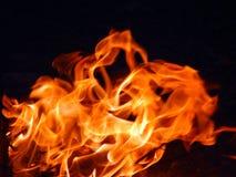 Pomarańcze ogień Obraz Stock