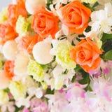Pomarańcze orchidea i róża Zdjęcia Royalty Free