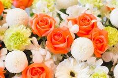 Pomarańcze orchidea i róża Obrazy Royalty Free
