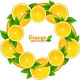 Pomarańcze plasterki z liścia round wektorową ramą ilustracja wektor
