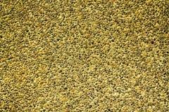 Pomarańcze tekstury Kamienna podłoga Rought skały tło Obrazy Royalty Free
