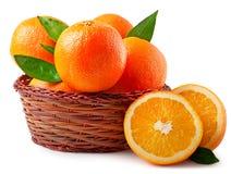 Pomarańcze w koszu na białym tle Fotografia Royalty Free
