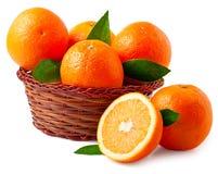 Pomarańcze w koszu na białym tle Obrazy Royalty Free