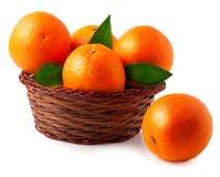 Pomarańcze w koszu na białym tle Obrazy Stock