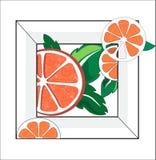 Pomarańcze z płatkami ilustracji