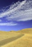 Pomarańczowa łąka z niebieskim niebem Zdjęcia Royalty Free