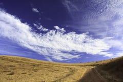Pomarańczowa łąka z niebieskim niebem Obrazy Royalty Free