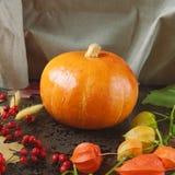 Pomarańczowa bania z żółtymi jesień liśćmi, kwiatami i jagodami, Zdjęcia Royalty Free
