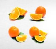 pomarańczowa lub inkasowa pomarańcze na tle Zdjęcia Stock