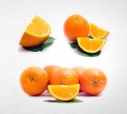 pomarańczowa lub inkasowa pomarańcze na tle Zdjęcia Royalty Free