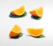pomarańczowa lub inkasowa pomarańcze na tle Zdjęcie Stock