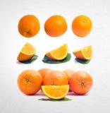 pomarańczowa lub inkasowa pomarańcze na tle Obraz Stock