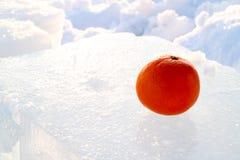 Pomarańczowa mandarynka na zimno lodzie, tropikalnej owoc i północnej zimie, fotografia stock
