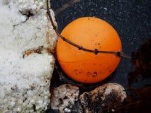 Pomarańczowa piłka w wodzie Fotografia Royalty Free