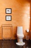 Pomarańczowa toaleta z białym pucharem Fotografia Stock
