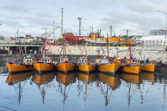 Pomarańczowe łodzie rybackie w Mar Del Plata, Argentyna Obraz Royalty Free