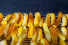 Pomarańczowe łupy Zdjęcie Royalty Free