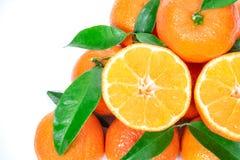 pomarańczowe świeże owoc zdjęcie royalty free