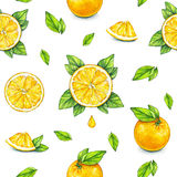 Pomarańczowe owoc dojrzałe z zielonymi liśćmi banki target2394_1_ kwiatonośnego rzecznego drzew akwareli cewienie handwork owoce  Obrazy Royalty Free