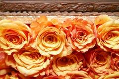 Pomarańczowe róże 035 zdjęcia stock
