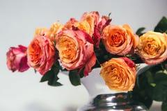 Pomarańczowe róże w wazie na szarym tle Zdjęcia Stock