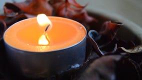 Pomarańczowego światła świeczka z potpourri z płomienia falowaniem w wiatrze wśrodku drewnianego pucharu zbiory wideo