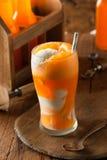 Pomarańczowej sody Creamsicle lody pławik obrazy royalty free