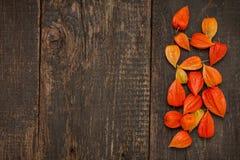Pomarańczowi Chińscy lampiony & x28; Physalis& x29; na nieociosanym drewnianym stole Zdjęcia Stock