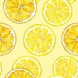Pomarańczowi cytryna segmenty banki target2394_1_ kwiatonośnego rzecznego drzew akwareli cewienie handwork owoce tropikalne zdrow Zdjęcia Royalty Free
