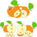 Pomarańczowi kolorów jabłek plasterki, kolekcja ilustracje Obraz Royalty Free