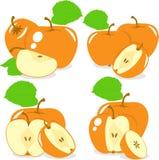 Pomarańczowi kolorów jabłek plasterki, kolekcja ilustracje Fotografia Royalty Free
