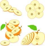 Pomarańczowi kolorów jabłek plasterki, kolekcja ilustracje Zdjęcie Royalty Free