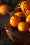 Pomarańczowi Organicznie przylądków agresty Fotografia Stock