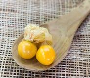 Pomarańczowi Organicznie przylądków agresty Obraz Stock