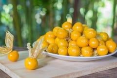 Pomarańczowi Organicznie przylądków agresty w talerzu Fotografia Stock