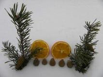 Pomarańczowy śnieżny rok z jedlinowymi gałąź Obraz Stock