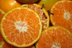 Pomarańczowy świeży chłodno zdjęcie stock