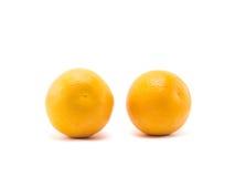 pomarańczowy białe tło Zdjęcie Stock