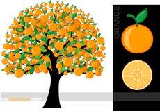 pomarańczowy drzewo ilustracji
