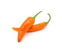 Pomarańczowy gorącego chili pieprz Fotografia Royalty Free
