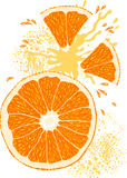 pomarańczowy kawałki wektora Fotografia Royalty Free