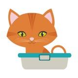 Pomarańczowy mały kot siedzi zielonych oczu wannę Zdjęcie Royalty Free