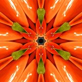 Pomarańczowy mandala, czerwieni, zieleni i pomarańcze kalejdoskop, Zdjęcie Royalty Free
