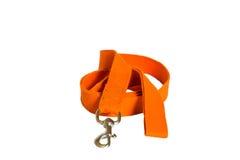 Pomarańczowy nylonu psa prowadzenie fotografia stock