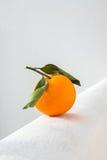 Pomarańczowy owocowy lying on the beach na biel ścianie Zdjęcie Stock