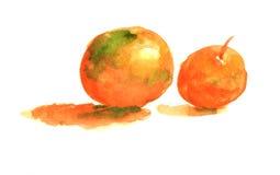 Pomarańczowy owocowy wodnego koloru obraz royalty ilustracja