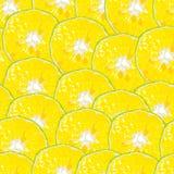 Pomarańczowy plasterek wyrównujący bezszwowy tło royalty ilustracja