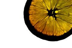 Pomarańczowy przekrój poprzeczny z białym tłem zdjęcie stock