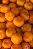 Pomarańczowy tło Zdjęcia Stock
